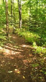 yurt path